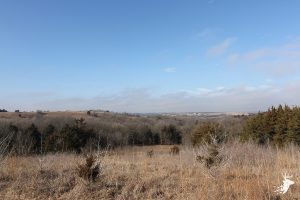 Flint Hills Farm with Exceptional Hunting photo