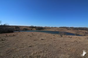 All Seasons Hunting Property with 7 Acre Watershed photo