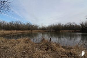 Hunting Retreat with Tillable Acreage photo