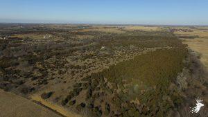 Premier Big Buck Sanctuary photo