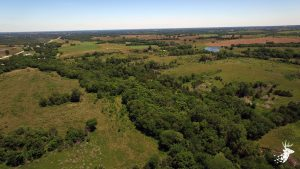 Quality Pasture with Great Hunting Potential photo