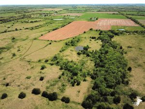 Income Producing Pasture Ground and Tillable Acres photo