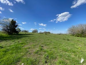 Build Site and Pasture Ground with Great Views photo