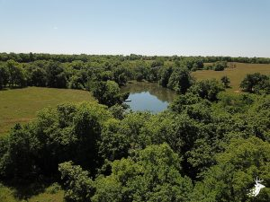 Build Site Overlooking Big Timber and Large Pond photo