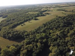 Prime Hunting with Cattle and CRP Income and Private Build Site photo