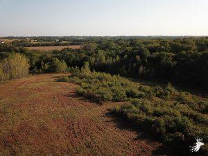12 M/L Acre Build Site in Holton, KS photo