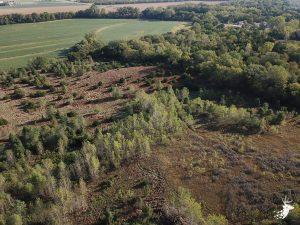 17 M/L Acres in Holton, KS photo